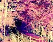 Highway To Heaven Downloadable Printable Art A sanctuary during these troubling times Path through Leafy Pink Bower