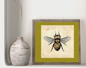 Bee and Honeycomb Digital Art Square