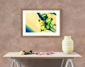 Yellow Butterfly Wall Art, Summer Nature Image, Downloadable Printable, Beach House, Home Oasis, Summer Cottage