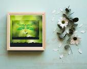Dragonfly Printable Art, Downloadable Nursery Decor, Spring Porch, Youth Wall Art, Homeschooling Aids, Summer Pollinator Decor