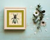 Bee, Downloadable Printable, Animal Art, Honeycomb, Honeybee Art Print, Honeycomb Print, Bee Wall Art, Animal Art, Vintage Animal Print,