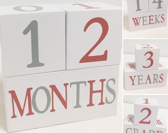 Baby Age Blocks - Photo Prop - 0 - 43 Weeks, Months, Years and Grade, Red and Gray