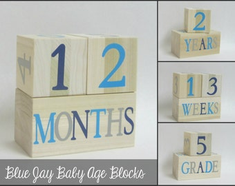 Boy Wooden Baby Age Blocks - Photo Prop - Weeks, Months, Years and Grade Large