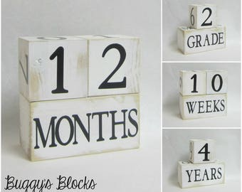 Baby Age Blocks - Photo Prop - 0 - 43 Weeks, Months, Years and Grade - Shabby Chic Black