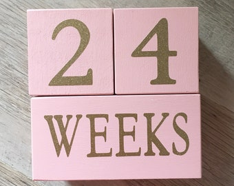 GLITTER Baby Age Blocks - Many Options Photo Prop - 0 - 43 Weeks, Months, Years and Grade