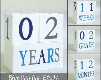 Boy Wooden Baby Age Blocks - Photo Prop - 0 - 43 Weeks, Months, Years and Grade