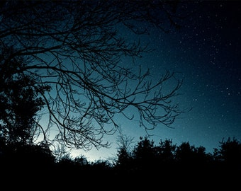 Autumn Night Series, HDR photograph, Blue and black, Fine art photograph, The Progression of Autumnal Night (Astronomical Blue)