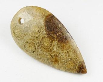 RARE - Chrysanthemum Fossil Coral Pendant Bead - 48x25x5mm