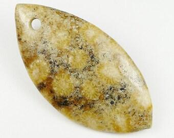 RARE - Chrysanthemum Fossil Coral Pendant Bead - 54x27x6mm
