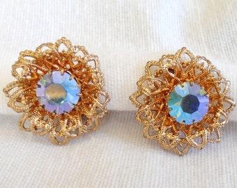 Earrings clips (405)