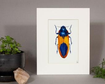 Jewel Beetle Species Painting, Framed Jewel Beetle Art Print, Framed Beetle Print, Mounted Beetle Artwork