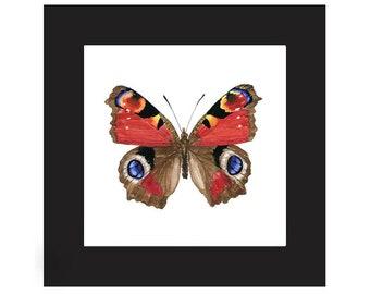 ARTWORK Peacock Butterfly Painting, Mounted Butterfly Art, Framed Specimen Art, Framed Watercolor, framed bug, watercolor print