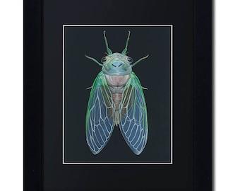 ARTWORK Newborn Cicada Painting, Green Cicada, Cicada mounted, Cicada framed