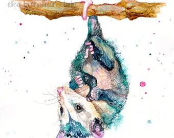Opossum Art Etsy