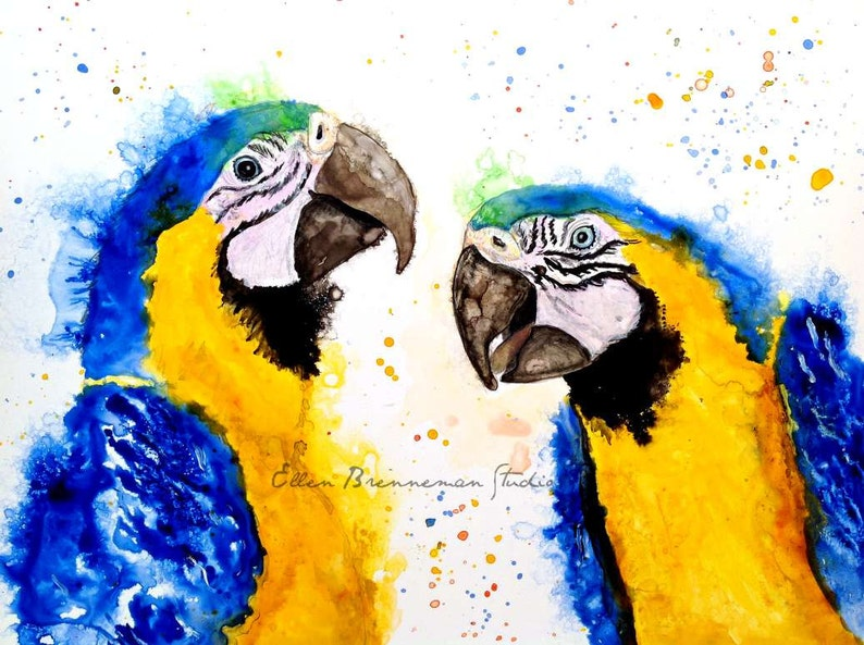 Colorful and whimsical Macaw parrot art print by Ellen Brenneman