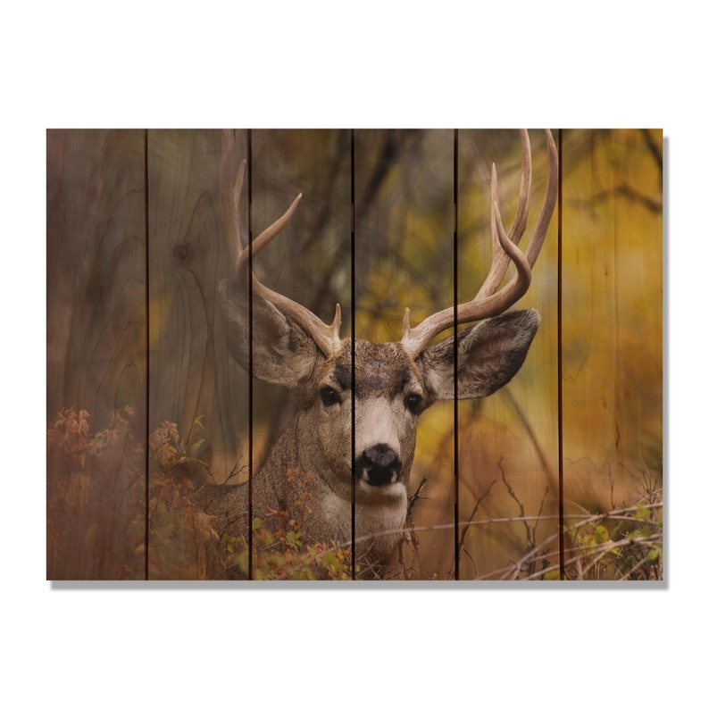 Deer Print On Wood Perfect Look Man Cave Decor Wall Hanging Etsy