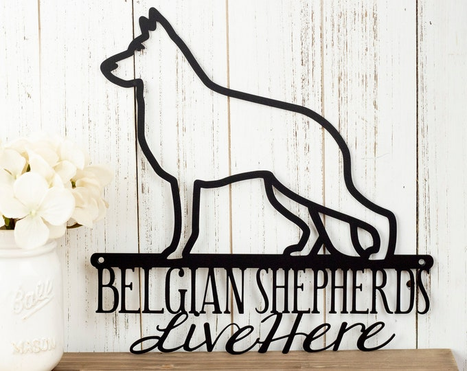 Belgian Shepherds Live Here Metal Sign - Black, 12x12, Metal Sign, Dog Sign, Door Sign, Wall Hanging, Wall Plaque