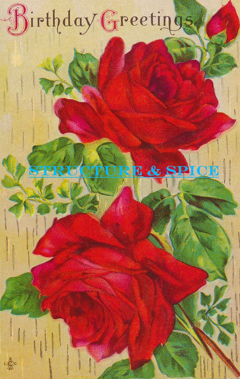 Antique Happy Birthday Postcard Featuring Beautiful Red Rose