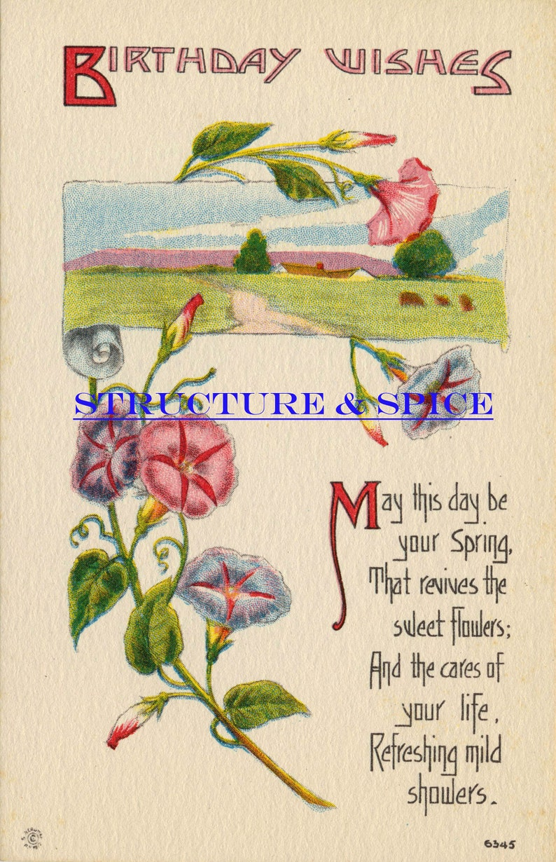 Antique Birthday Wishes Postcard With A Beautiful