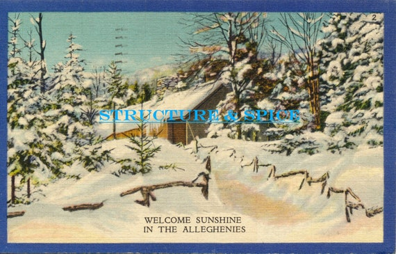 Vintage Linen Postcard of Winter in the Deep Woods of the Alleghenies in the Mountains of Pennsylvania This Postcard is Circa 1935.