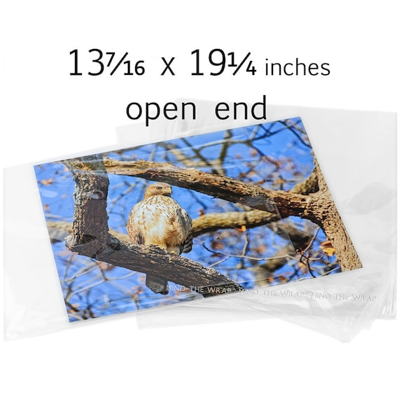 25 - Open End Clear Bags - 13-7/16 x 19-1/4 inches - 1.6 mil Archival Quality BOPP - Fits 13 x 19 inch Photos