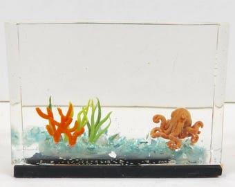 Octopus Aquarium