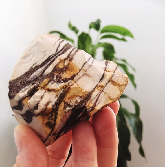 Zebra Jasper natural raw crystal