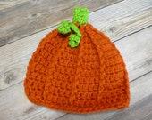 Baby pumpkin beanie hat gift present handmade MI designer