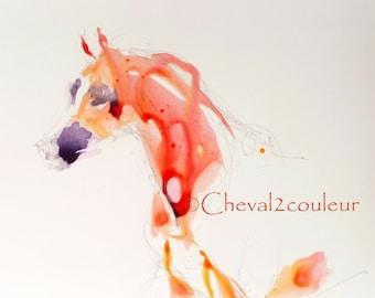 Original ARABIAN HORSE WATERCOLOR painting - Sketch