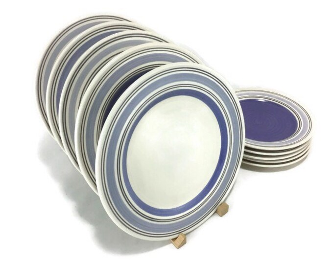 Pfaltzgraff Rio Dinner Plates * Sold Individually or in Sets