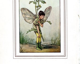 Antique Print Color Book plate Vintage Print Bookplate The Book of Flower Fairies The Groundsel Fairy Cicely Barker 1937