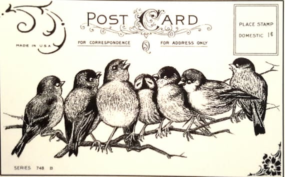7 songbirds postcard, unmounted rubber stamp these precious 7 little birds sit nestled on a branch singing happily