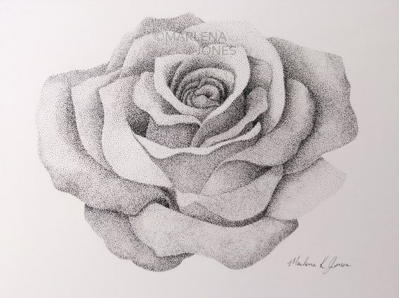 Stippling Drawing Rose In Ink On Paper 4 1 2 X 5 Etsy