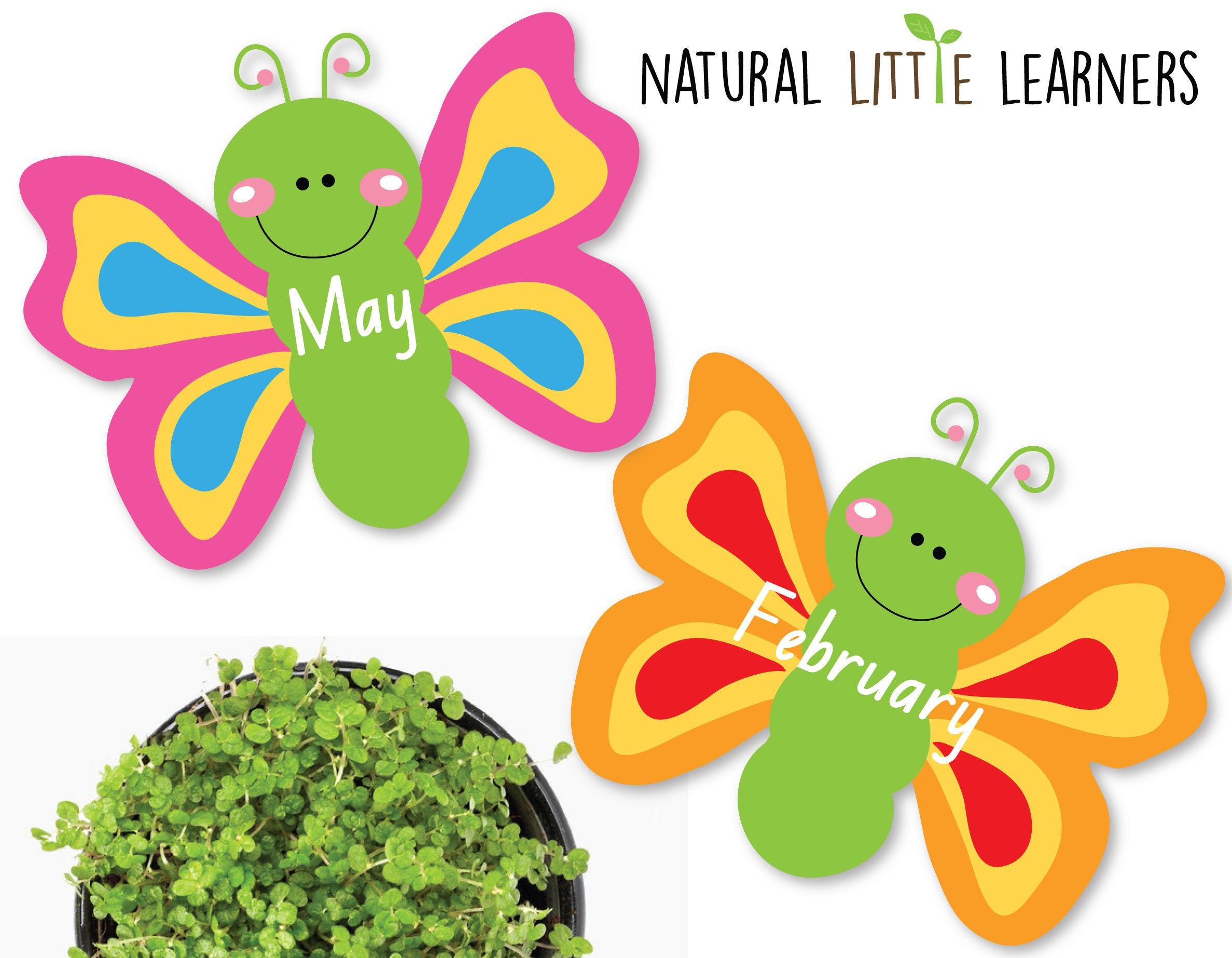 Butterfly Birthday Chart Room Decor Preschool