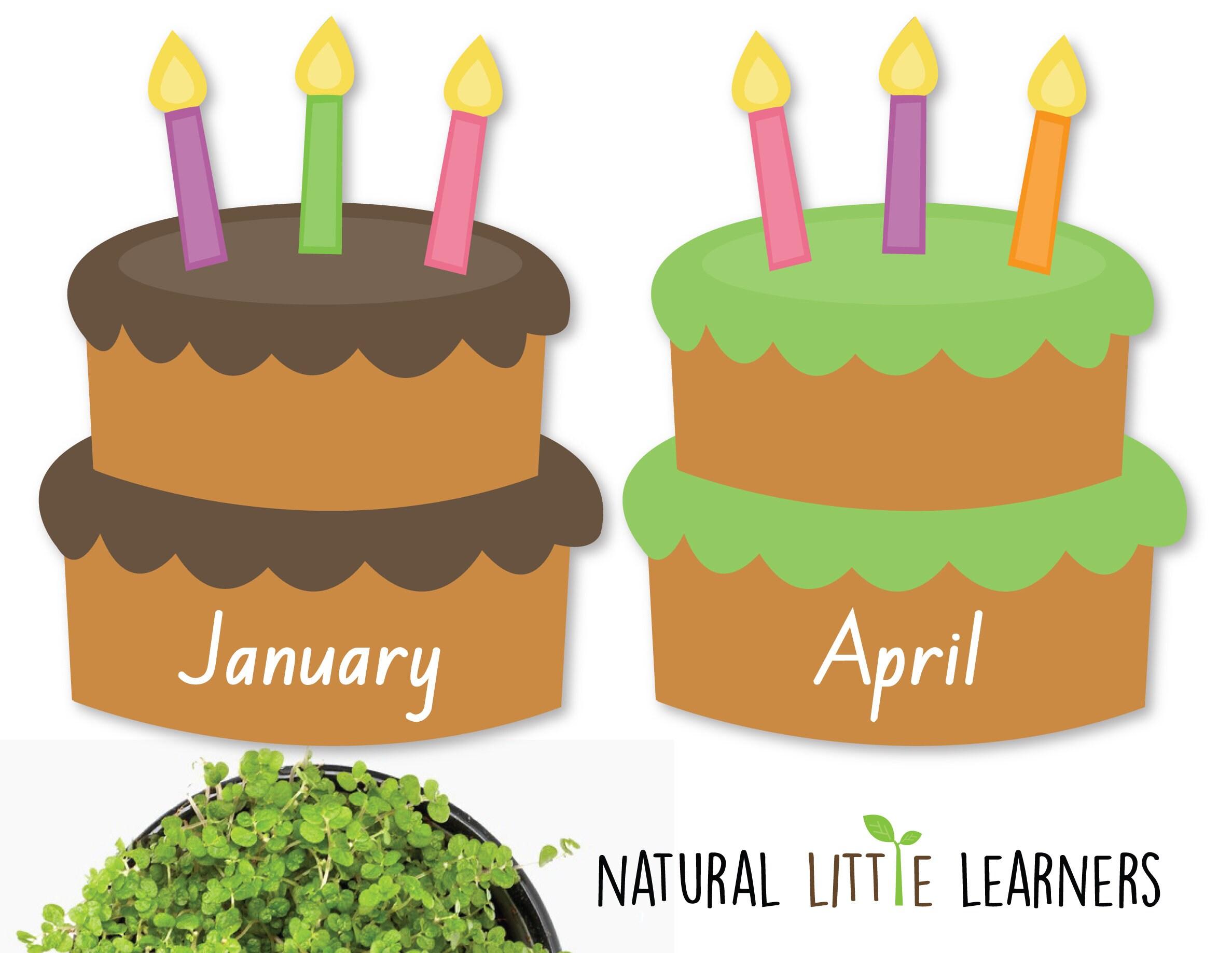 Birthday Cake Birthday Chart Room Decor Preschool Decor Etsy