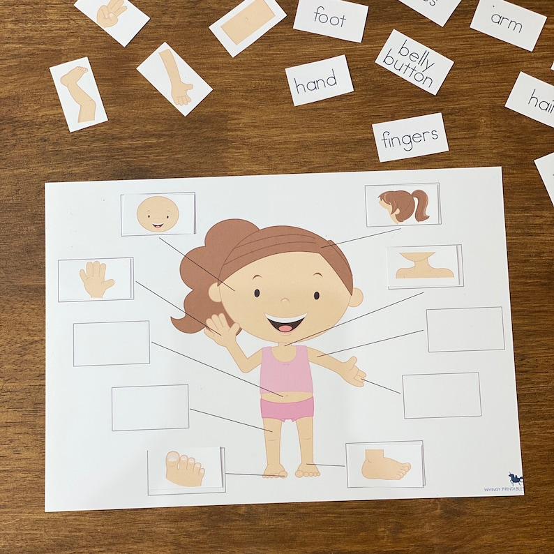 Body Parts Educational Montessori Learning Children My Body Homeschool My Body Parts Activity|  My Body Preschool Activities