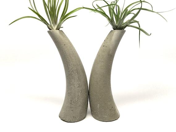 corne planteurs serre livres d coration jardini res. Black Bedroom Furniture Sets. Home Design Ideas