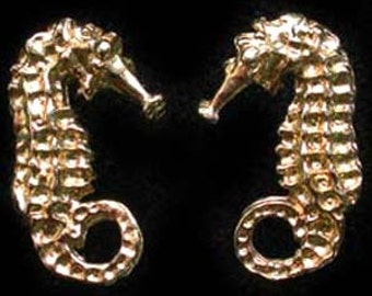 Seahorse stud earrings in 24ct Gold on Sterling Silver.
