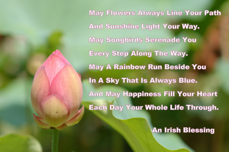 An Irish Blessing Lotus Flower Irish Prayer Irish Saying Quote Etsy