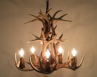 Real antler chandelier etsy 5 light down light double tier real whitetail antler chandelier 20 22 h aloadofball Gallery