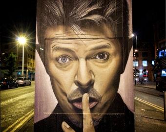 Bowie (2016) - Fine art photography, Manchester