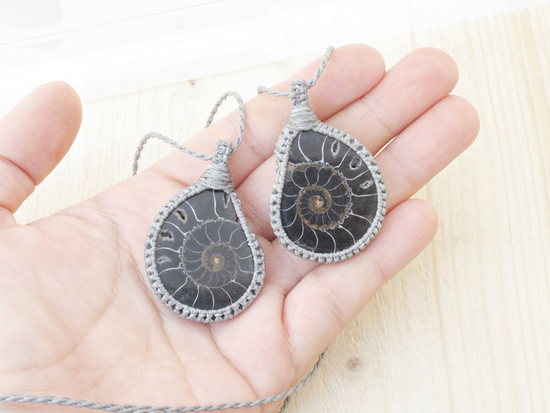 Ammonite two halves of a whole fossil for two special people in grey