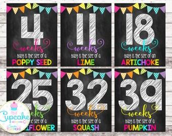 Weekly Pregnancy Chalkboard Signs | Weeks 4-41 | Pregnancy Week by Week | Pregnancy Photo Props | Pregnancy Countdown | Maternity | Digital
