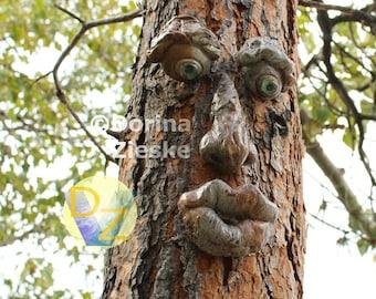 Forrest Stump - (Concrete) Tree Face (rust/grey color) • Glass Eyes • Garden Sculpture Ornament • Garden Art • Yard Art • Xmas Gift Ideas