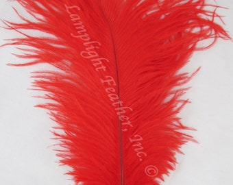 """25 RED DYED SOLID ROOSTER TAILS CRAFT MILLINERY FEATHERS 8/""""-10/""""L"""