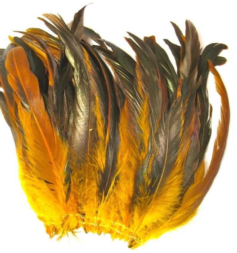 Turquoise Coque Rooster Tail Feathers 6-8 inch per ounce