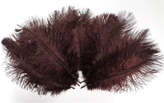 Burgundy Ostrich Feather 8-12 inch size per Each