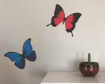 73fa5a336ee7d Blue Morpho Butterfly Sticker - Insect Decal - Summer Butterflies Home Wall  Art Decor - Bug Collection Laptop Sticker