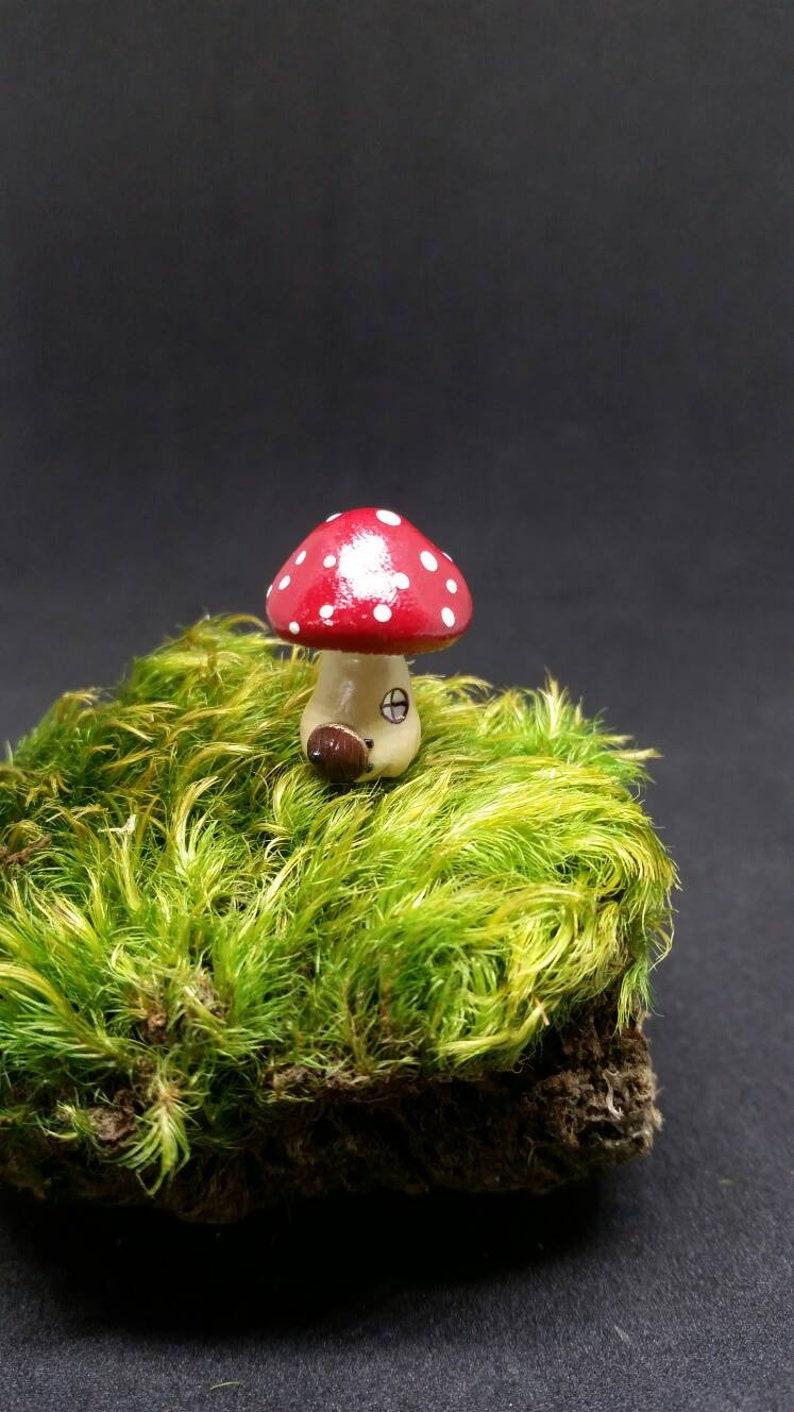 Mushroom Fairy House Mushroom Terrarium Figurine Mushroom Etsy