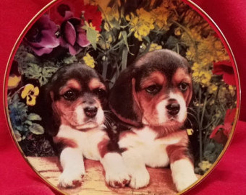 The Franklin Mint Spa-Europe Puppies /& Posies by Louis Grant Limited Edition Vintage Collectible Ceramic Gold Rimmed Plate